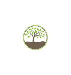 tree ecology nature logo vector image