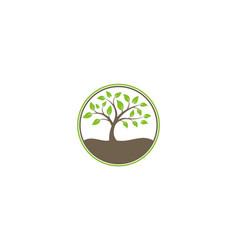 tree ecology nature logo vector image