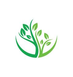 Tree logo image vector