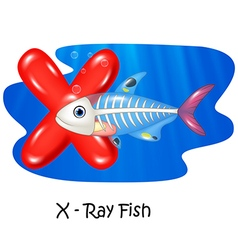 Cartoon X of letter X-ray fish vector image