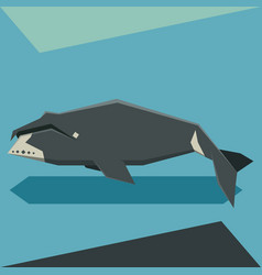 flat design bowhead whale vector image