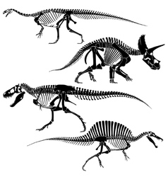 Ancient fossil dinosaur skeletons lizard animals vector image vector image