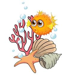 An orange puffer fish near the seashells vector
