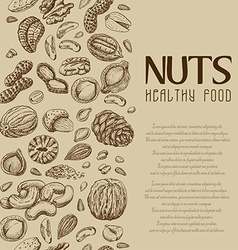 background with nuts and seeds vector image