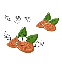 Cartoon almonds nuts with leaves vector