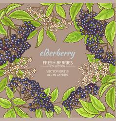 Elderberry frame vector