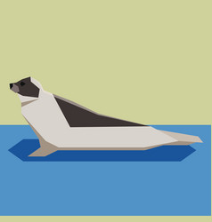 flat design harp seal vector image