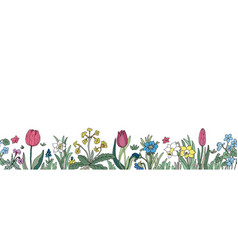 floral seamless border background with isolated vector image