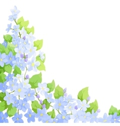 Forget me not background vector