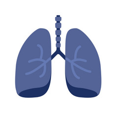 lung or human lungs icon with bronchial system vector image