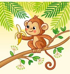 monkey sits on a tree and eats a banana cute vector image