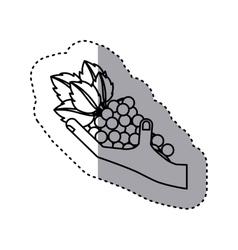 Sticker contour of hand holding grape fruit vector