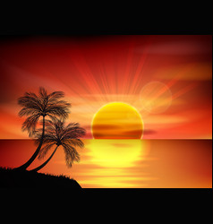 Sunset background palm tree vector image