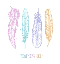 Feathers Set Hand Draw Sketch Card vector image vector image