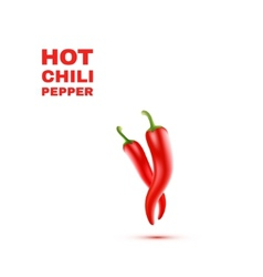 Chili Peppers isolated on white Background vector image