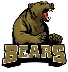 big brown bear mascot vector image vector image