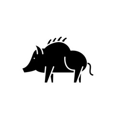 boar black icon sign on isolated vector image