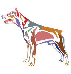 Colorful decorative standing portrait dog vector