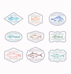 fish vintage frame badges or logo templates set vector image