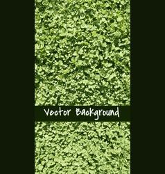 GrassBackground vector