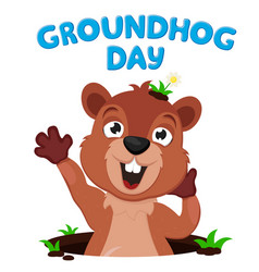 groundhog crawls out its burrow vector image