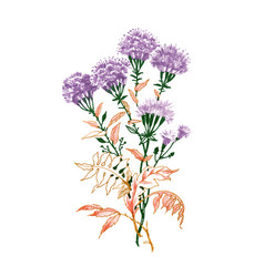 hand drawn painting with colorful flowers on white vector image