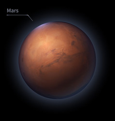 mars realistic planet is isolated on the cosmic vector image