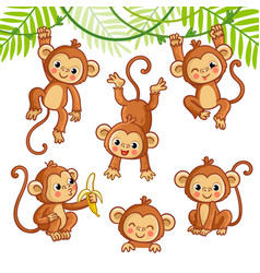 set with monkey in different poses vector image