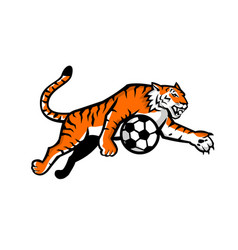 tiger jumping soccer ball mascot vector image