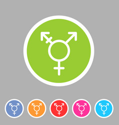 transgender lgbt transsexual icon flat web sign vector image