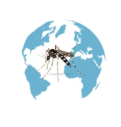 Zika Virus vector
