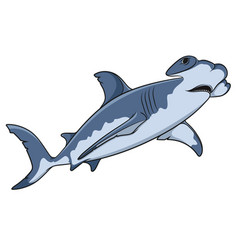 color of the hammerhead shark vector image