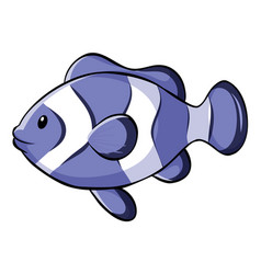 Bllue clownfish on white background vector