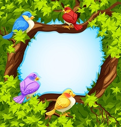 Border design with birds on tree vector image