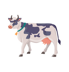 cheerful cow in a collar with a bell vector image