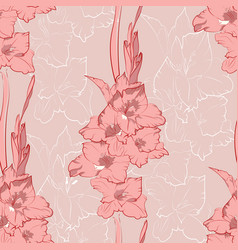 Flower seamless pattern from pink gladiolus vector