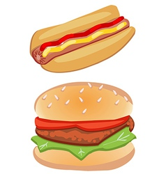 Hot dog and hamburger vector