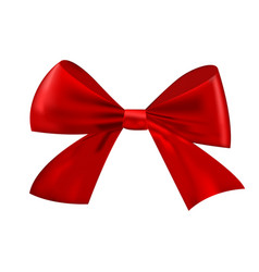 realistic christmas bow isolated on white vector image