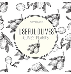 seamless pattern black ink hand drawn olive vector image