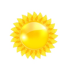 Abstract sun isolated on white background vector image
