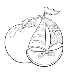 Adult coloring bookpage apples image vector