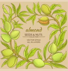Almond frame vector