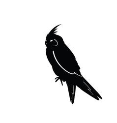 Bird vector