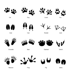 Black Animal Tracks Set vector