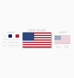 Usa flag specifications vector