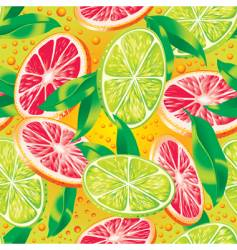 Citrus background vector