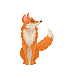 Cute red fox sitting on floor and looking around vector