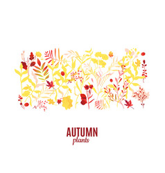 flat abstract autumn plants pattern icon vector image