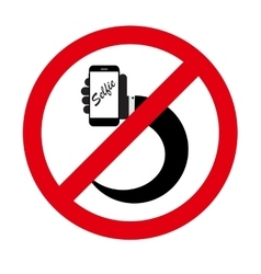 Flat Selfie Icon vector image