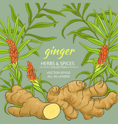 Ginger frame vector